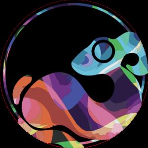 Colourwhirl Logo – Zoom Slipmat