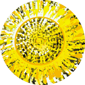 Lisa Dea – Sun burst Slipmat